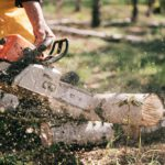 De handigste tools voor in de tuin